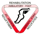 Academy of Ambulatory Foot and Ankle Surgery